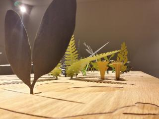 Detailed view of the plants in the table